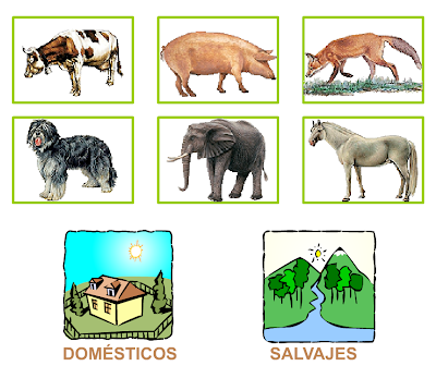 http://primerodecarlos.com/SEGUNDO_PRIMARIA/noviembre/Unidad_4/actividades/cono_unidad4/mamiferos5_domesticos_salvajes.swf