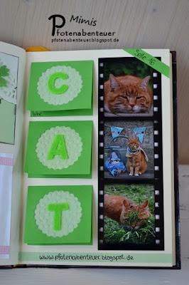 Recht Seite von Pfotenabenteuer im Katzenbloggerbuch