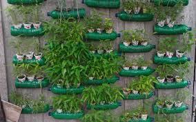 pot botol bekas taman vertikal garden