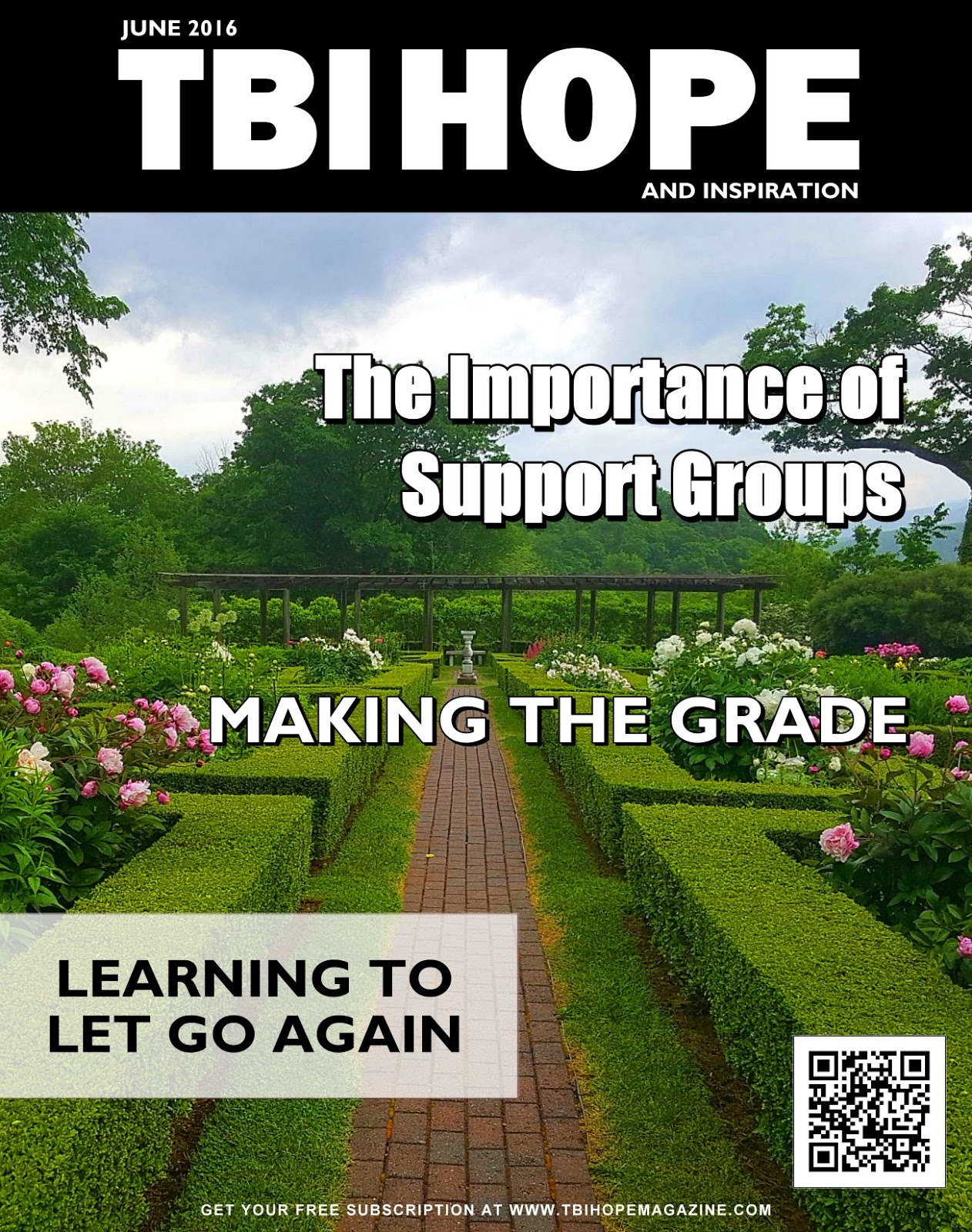 TBI HOPE Magazine June 2016 Cover Art Reveal David39s