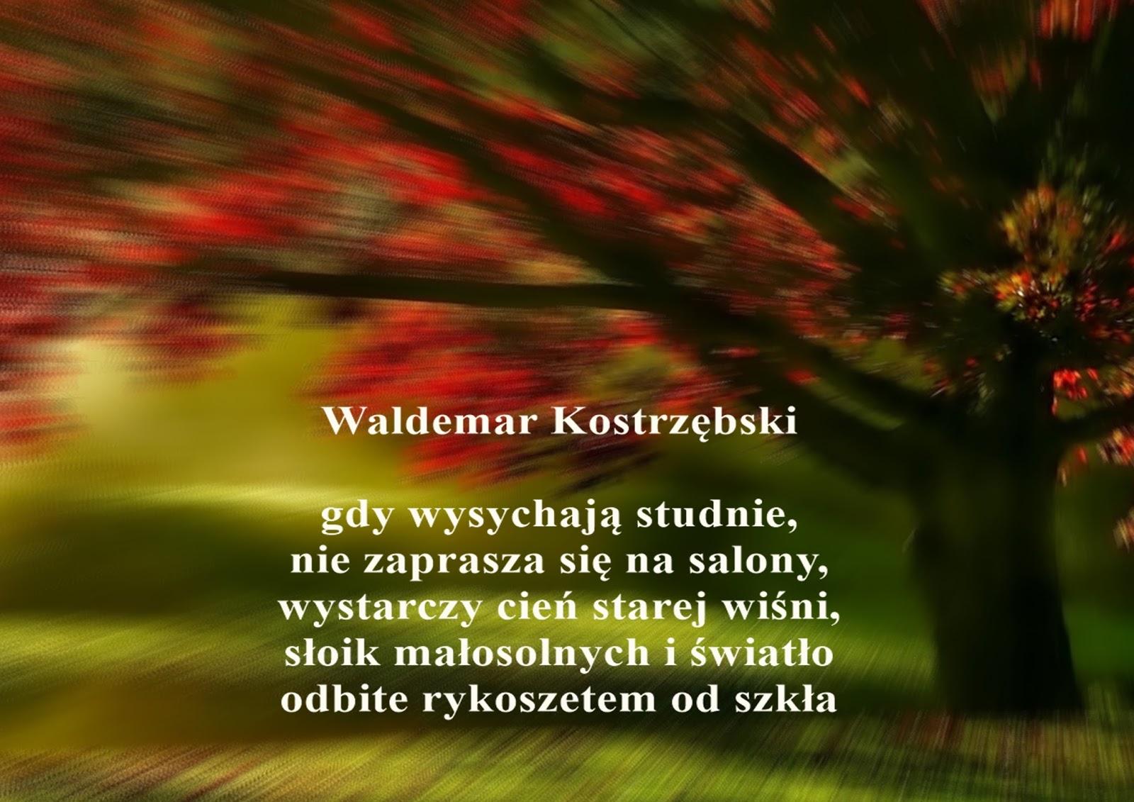 Poezja Po Godzinach Waldemar Kostrzębski Każde Pokolenie
