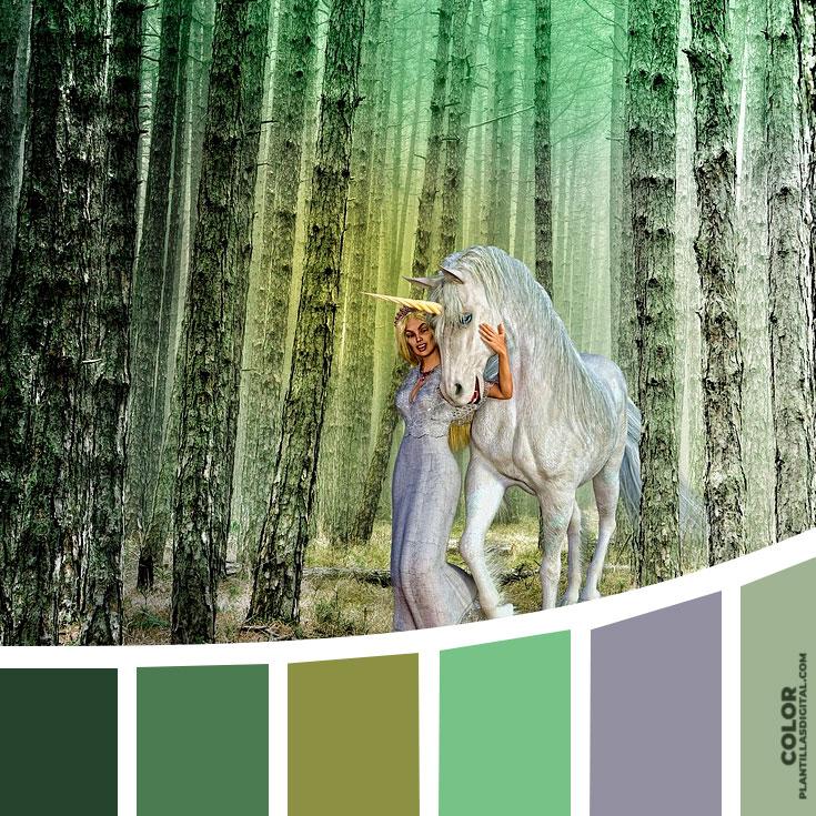 color_339