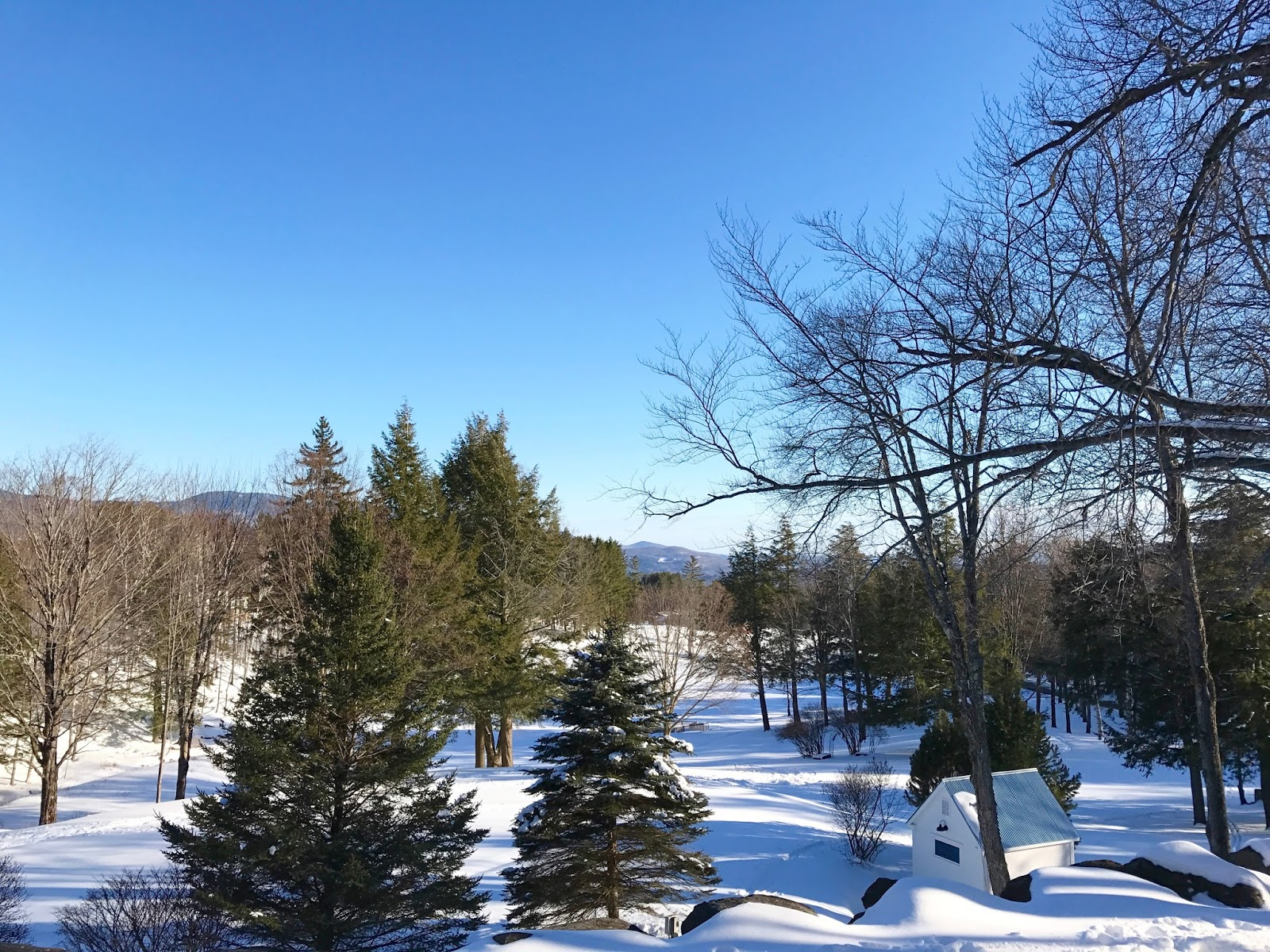 Edson Hill | Stowe Vermont