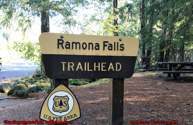 Ramona Falls Trail Head
