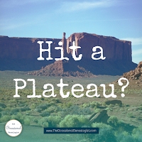 When you hit a research plateau, it's probably time to learn. #genealogy #familyhistory