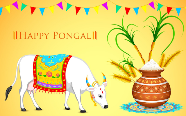 Happy Pongal  Images