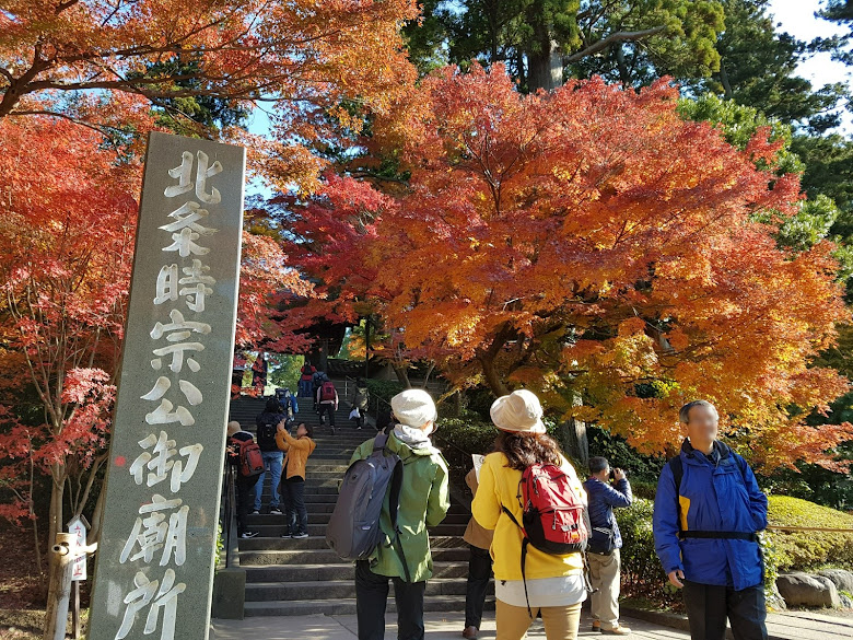 円覚寺的入口楓葉