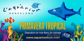 Primavera Tropical L'Aquàrium