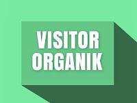 Tips Mendapatkan Banyak Visitor Organik Yang Berlimpah Setiap Harinya