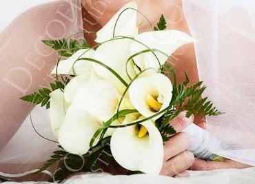 Menyasszonyi csokor fehér kálából zöld levelekkel