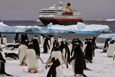 Antarctic Territory, cruise liner and penguin colony