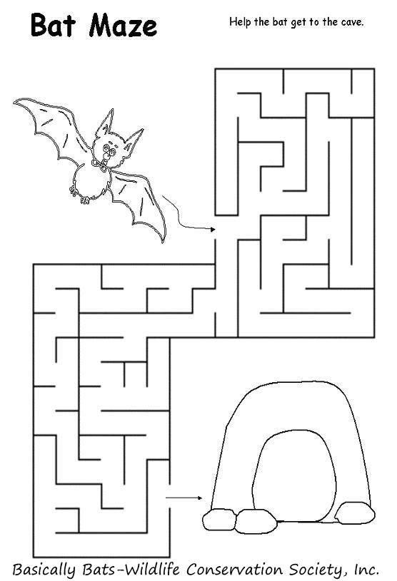 bat maze
