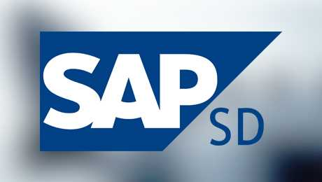 Descargar configuración SAP SD