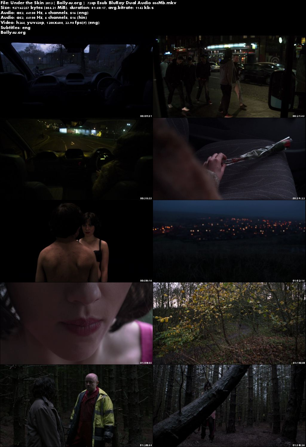Under the Skin 2013 BluRay 350MB Hindi Dual Audio 480p Download