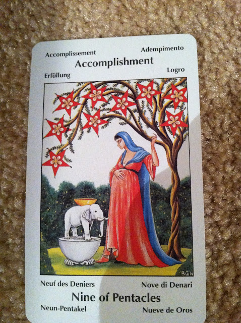 Turtlephoenix Tarot, Dreams, And Astrology: Nine Of