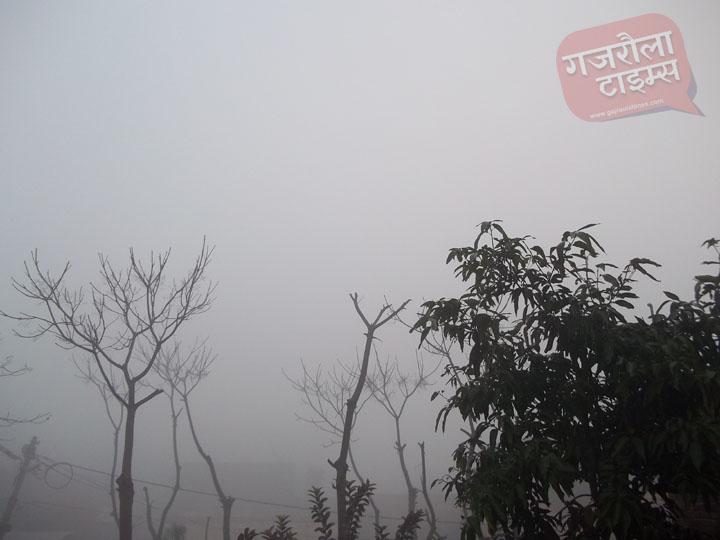 गजरौला-में-कोहरा-सर्दी