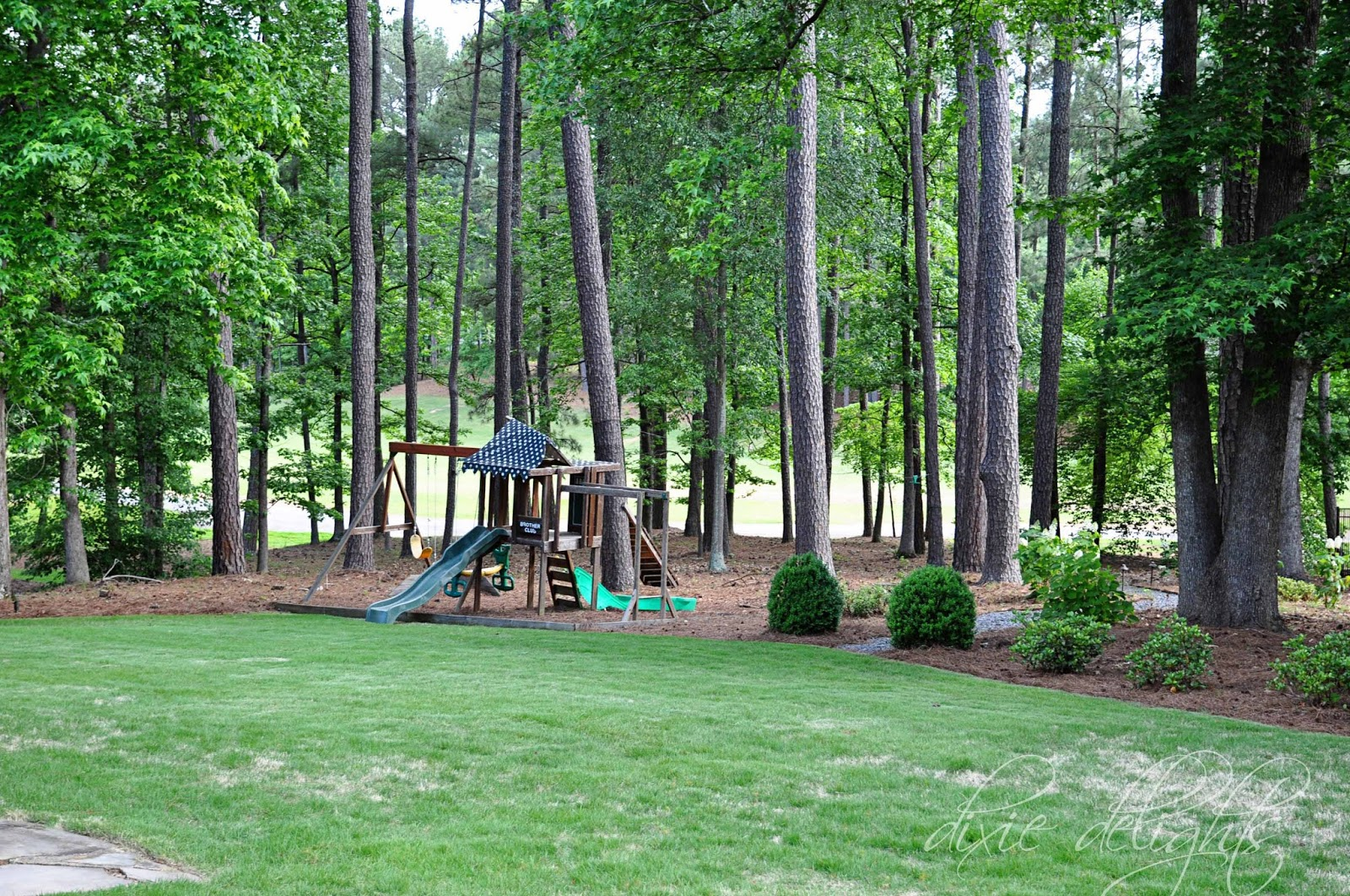 Spring green dixie delights for Landscaping ideas for wooded areas