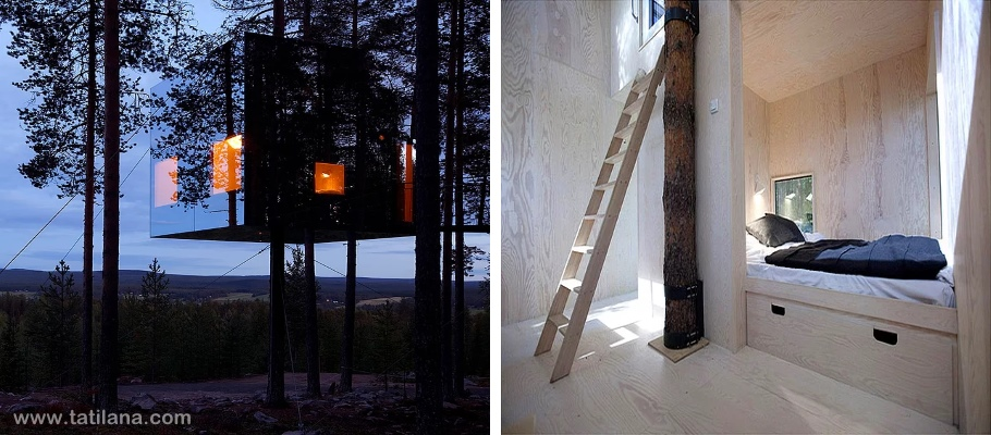 Mirrorcube Tree House Hotel