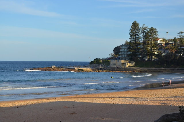 The foreground is the sandy beach which curves around to the right hand side of the picture and then returns in the distance to create a cove. The far side of the cove  has an ocean pool built into the rocks. On the shore behind it is a building with public facilities and the built up area of Dee Why.  There are residential homes and apartments built on the hill behind tall Norfolk Island pine trees.
