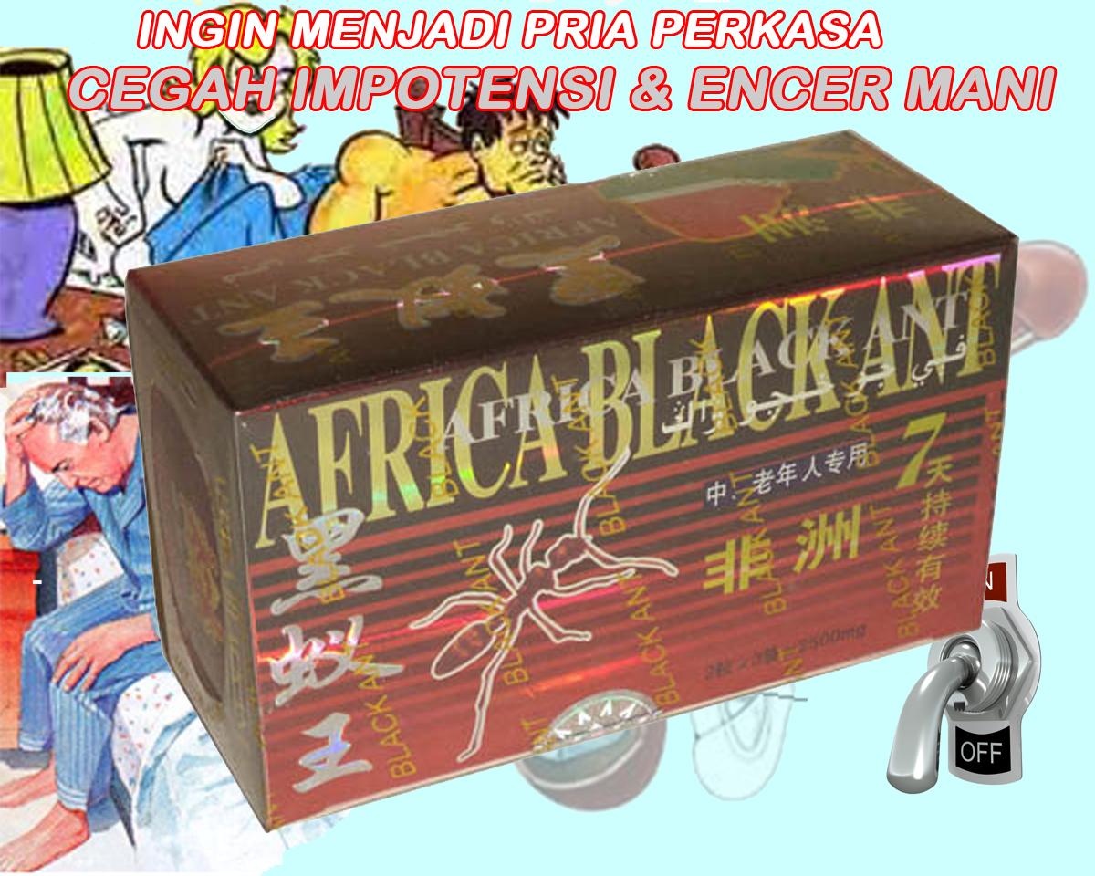 obat kuat black ant kapsul titan gel original www