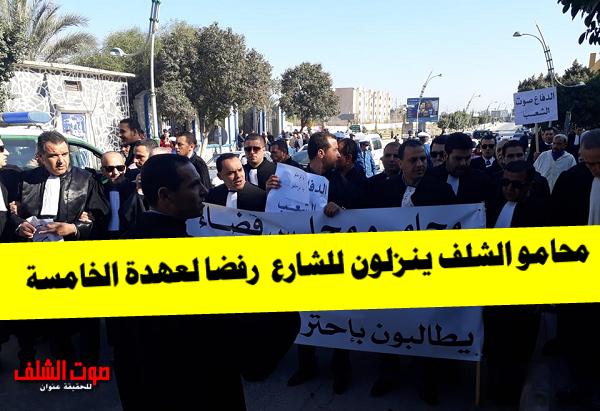محامو الشلف ينزلون للشارع رفضا للعهدة الخامسة