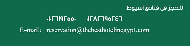 فندق بارتنر اسيوط