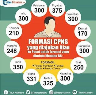 Inilah Formasi Lengkap CPNS 2018 Wilayah Riau