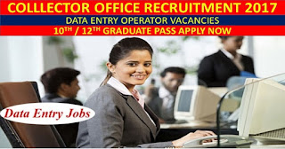 Collector Office, Bhind (Madhya Pradesh) Recruitment 2017 - Apply online for Data Entry Operator (DEO)
