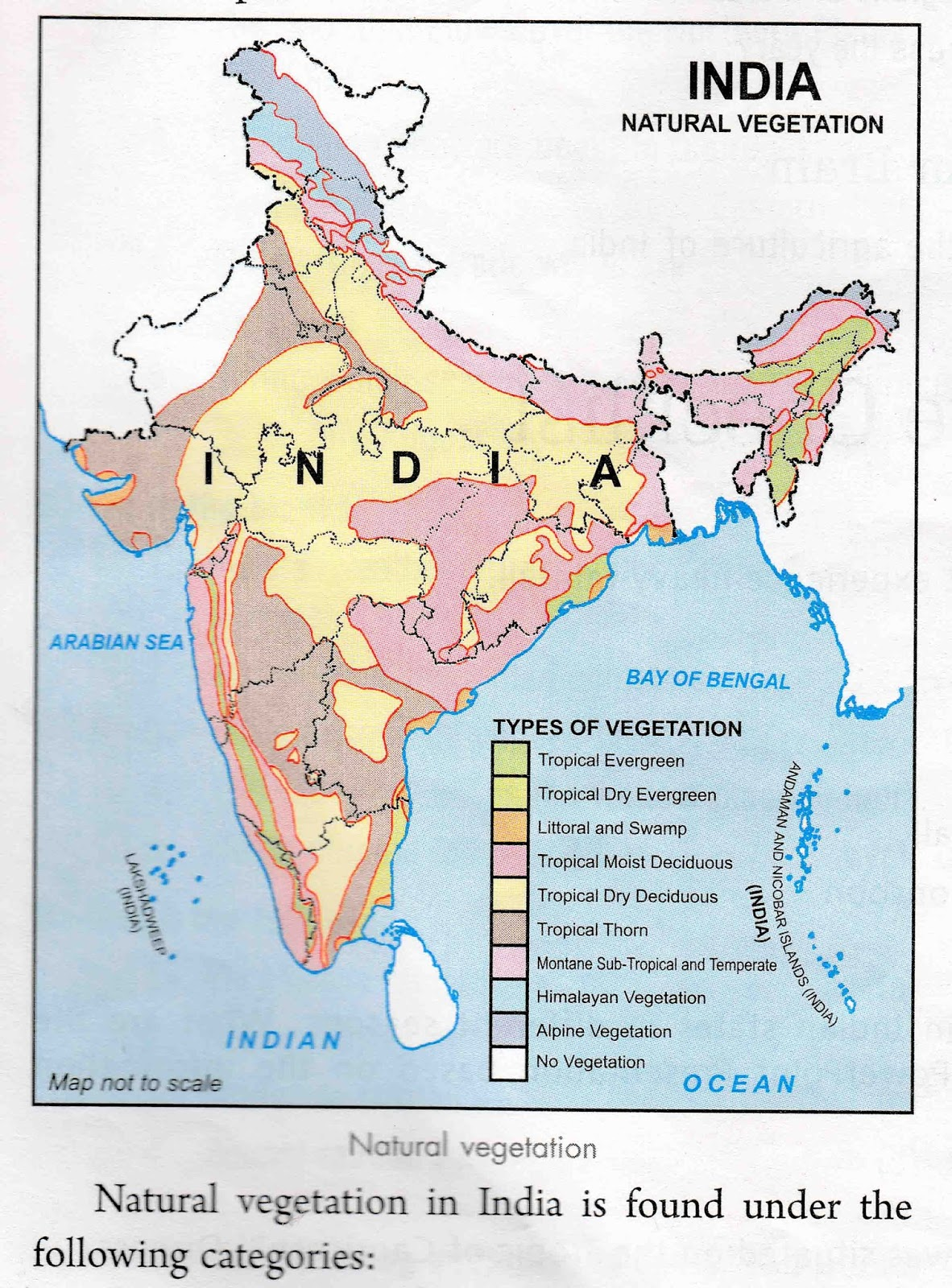 Important Industries in India Map 1. Automobile Industries 2 ... on map of india islands, map of india china, map of india maps, map of india tigers, map of india architecture, map of india politics, map of india cattle, map of india rivers, map of india independence, map of india parks, map of india jungles, map of india range, map of india history, map of india africa, map of india natural resources, map of india landscape, map of india food, map of india waterways, map of india states, map of india sea,