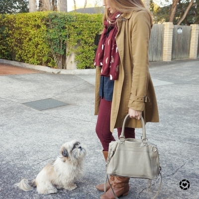 awayfromblue instagram burgundy pants navy shirt camel trench cooper shih tzu