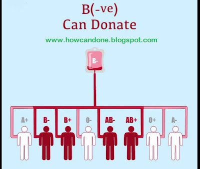 File:Which Blood Group Are Best For Donate Each Other.svg