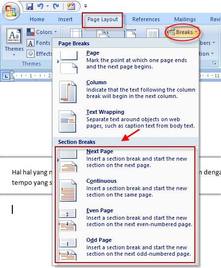 Cara Menghapus Word Kosong : menghapus, kosong, Mudah, Menghapus, Section, Break, Microsoft, 2007,, 2010,, Panduan, Office