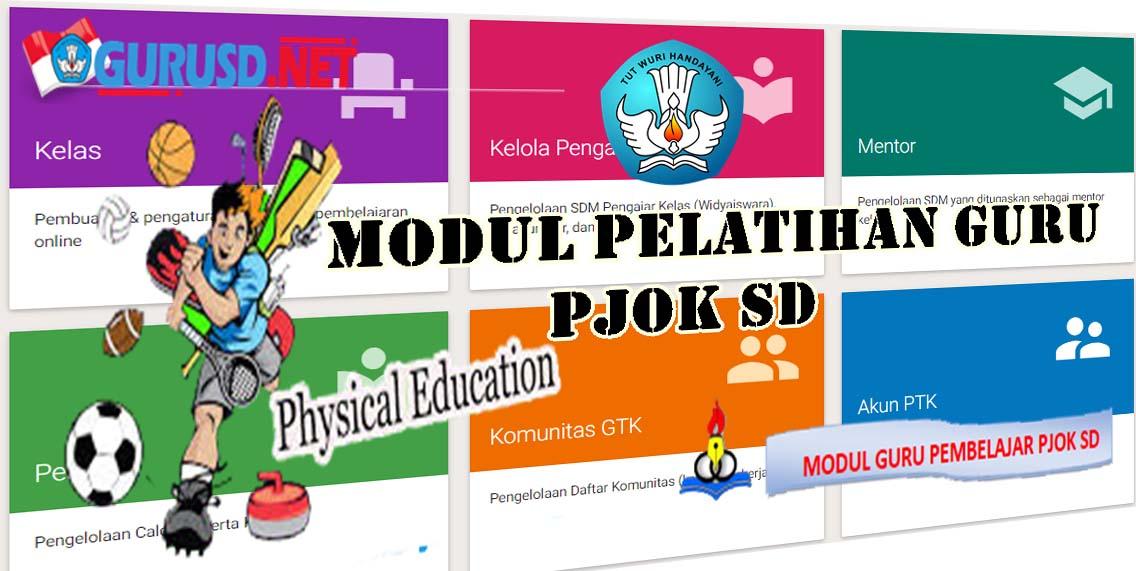 Modul Guru Pembelajar Pjok Sekolah Dasar Seluruh Kelompok Kompetensi Kurikulum 2013 Revisi