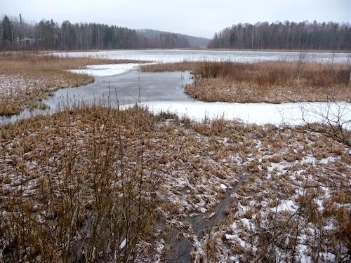 Keski-Suomen maakuntaura: Laajavuori - Ladun Maja