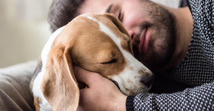 New Study Proves We Prefer Dogs To Humans