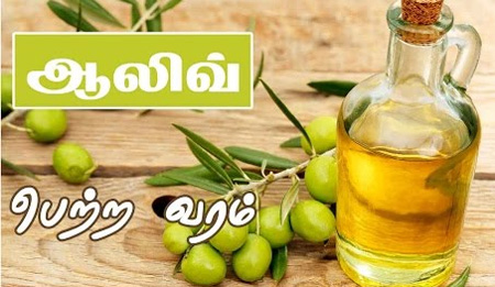 Health Benefits of Olive Oil in Tamil – Healthy Cooking Tips