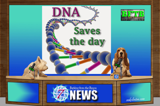 BFTB NETWoof News reports DNA saves dog from Death Row