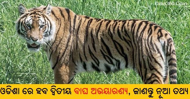 Odisha plan to develop 2nd tiger habitat