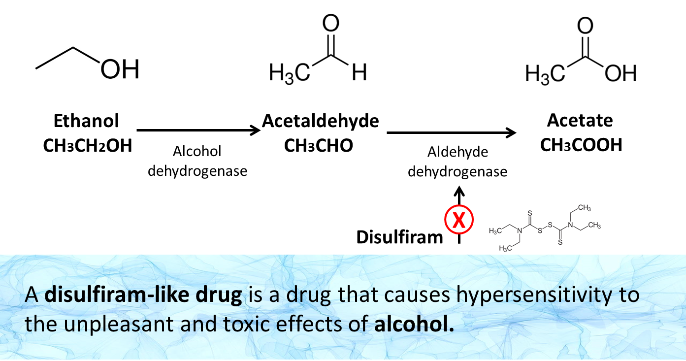 normally alcohol in the body is metabolized in the liver thanks to the enzyme alcohol dehydrogenase that transforms it into acetaldehyde which subsequently