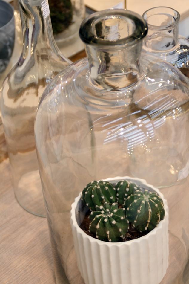 Messeeindrücke von der Ambiente 2016 bei Hübsch Interior, Kakteen im Glas