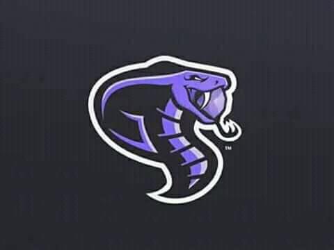 Mentahan Logo Squad E-sport