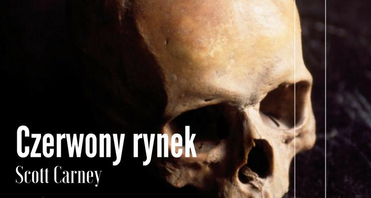 Ludzka czaszka, fragment okładki Wydawnictwa Czarnego.