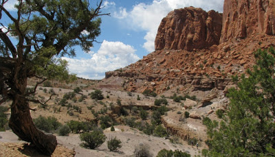 Chimney Rock Trail i Capital Reef National Park i Utah.