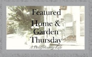 Magic of Rain Lilies Featured on Home and Garden Thursday