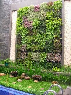 vertical garden dengan kolam