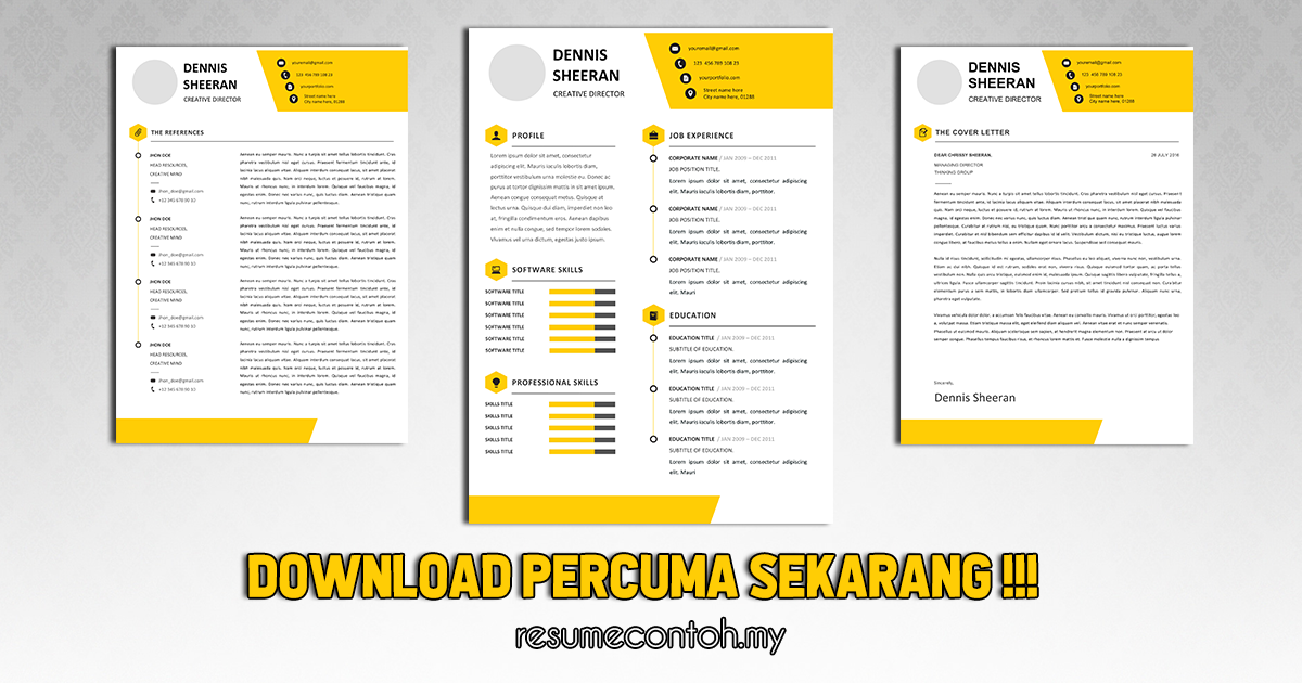 Contoh Resume Moden, Menarik dan Senang Untuk Edit [Resume Free]