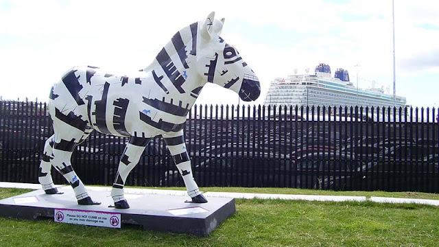 ABP zany zebra with cruise ship
