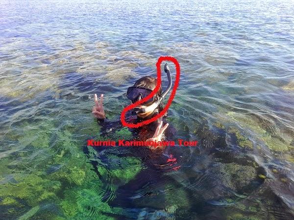 alat snorkel