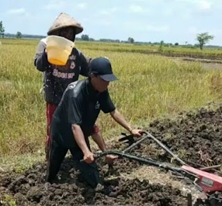 Hubungan Budaya Antara Masyarakat Agraris dan Teknologi