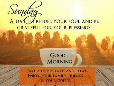 Good Morning Whatsapp Images - beautiful view of morning with cup of tea for whatsapp share